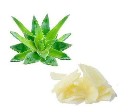 Aloe disidratato 100g