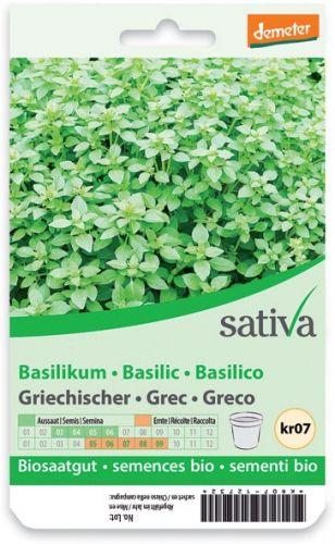 Basilico greco 1.25 g BIO  (min. acquisto 10 pezzi)