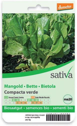 Bietola - compacte verde 2.5 g BIO  (min. acquisto 10 pezzi)