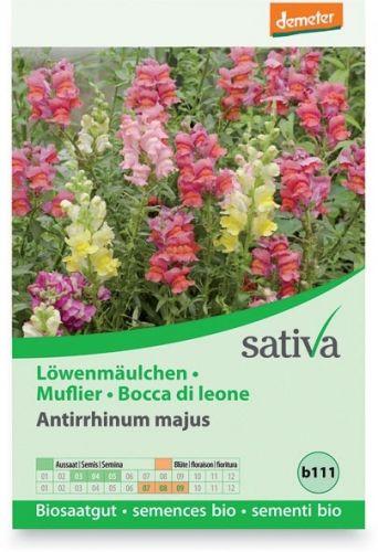 Bocca di leone - antirrhium majus 0.25 g BIO  (min. acquisto 10 pezzi)