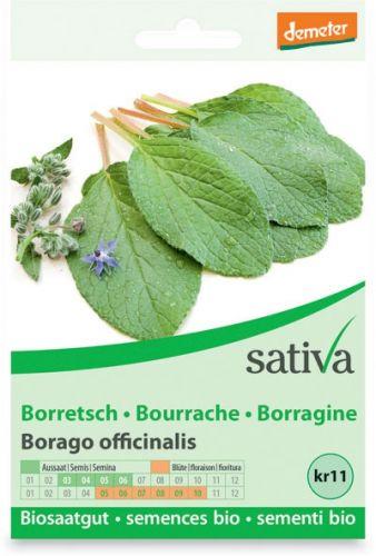 Borragine - borrago officinalis 2.5 g BIO  (min. acquisto 10 pezzi)