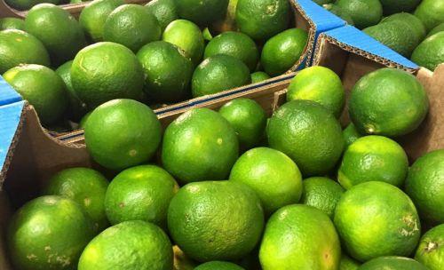 Casse Di Lime 15 Kg