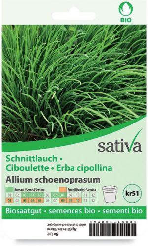 Erba cipollina 2.5 g BIO