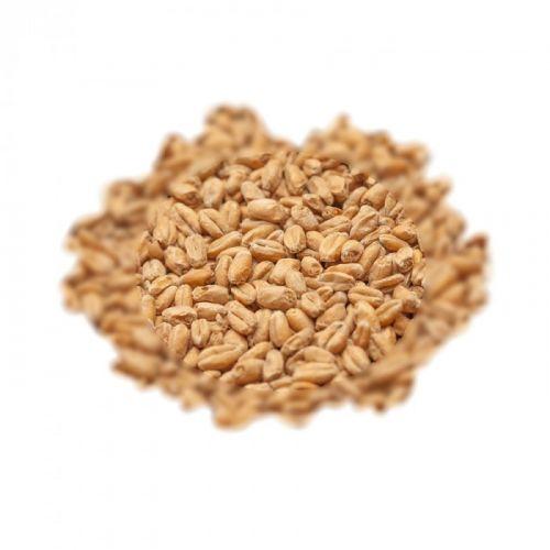 Malto Best Heidelberg Wheat (Weizen) - Kg 25