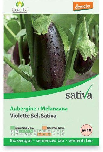Melanzana violetta 0.5 g BIO  (min. acquisto 10 pezzi)