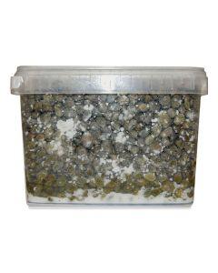 Capperi sotto sale 3,3kg BIO