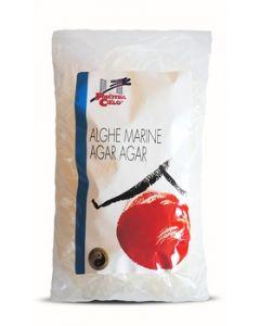 Alghe marine Agar Agar 50 g (6 pezzi)