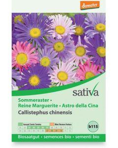 Astro della cina - calistephus chinensis 0.5 g BIO