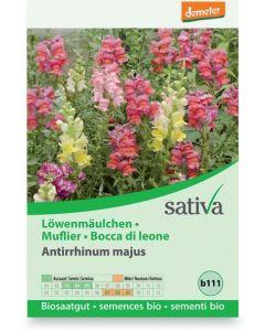 Bocca di leone - antirrhium majus 0.25 g BIO