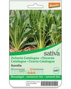 Cicoria catalogna 1.25 g BIO