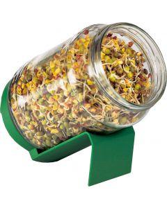 Germogliatore in vetro mini 30 g (min. acquisto 10 pezzi)