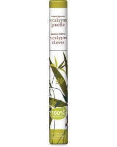 Incenso eucalipto e chiodi di garofano 30 BIO  (min. acquisto 10 pezzi)