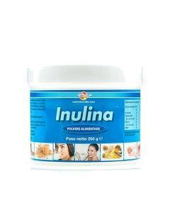 Inulina 1Kg senza glutine