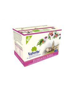 Echinacea Alpina (20 filtri) 30g BIO