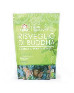 Risveglio di Buddha-proteine della canapa 360g