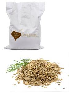 Finocchio (semi in polvere) 1Kg Bio