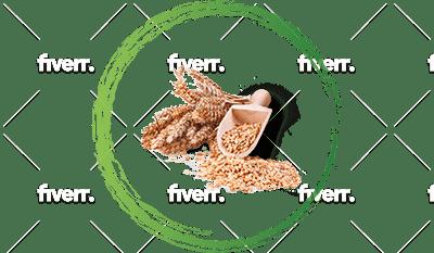 cereali biologici e italiani